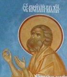 Святой блаж. Василий Московский